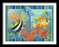 Framed Tropical Fish Goup II