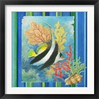 Framed Tropical Fish I