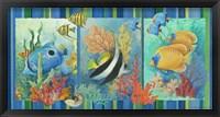 Framed Tropical Fish Strip