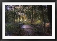 Framed Beyond the Wooden Bridge