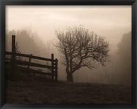 Framed Mountain Meadow Farm