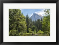 Framed Half Dome from Sentinel Bridge