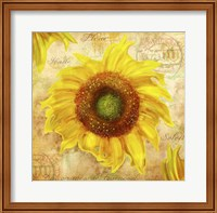 Framed Tuscan Flower 7