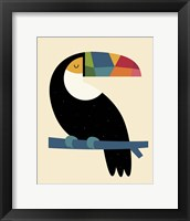 Framed Rainbow Toucan