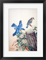 Framed Bluebirds