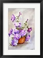 Framed Petunia