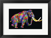 Framed Wooly Mammoth