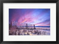 Framed Beach Fences