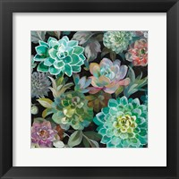 Framed Floral Succulents v2 Crop