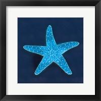 Framed Cyanotype Sea III