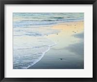 Framed Beach at Sunrise