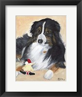 Framed Collie Sal and toy