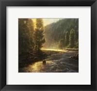 Framed Morning in the Wilderness