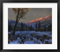 Framed Awakening Dawn