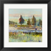 Framed Colorful Fields