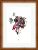 Framed Abstractions of the Heart
