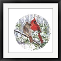 Winter Wonder Cardinal Couple Framed Print