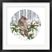 Winter Wonder Female Cardinal Framed Print