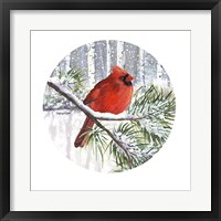 Framed Winter Wonder Male Cardinal