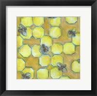 Framed Honeycomb