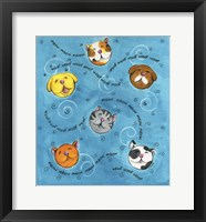 Framed Bouncey Balls Cats and Dogs