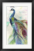 Framed Peacock Dress
