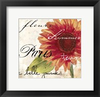 Framed Paris Songs II