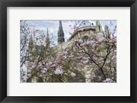 Framed Notre Dame de Paris III