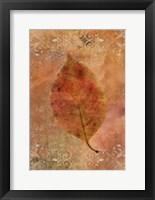 Framed Picked Up Autumn Leaf I