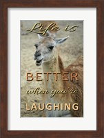 Framed Life Is Better Laughing