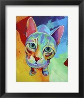 Framed Ace Cat
