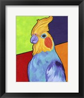 Framed Cockatiel