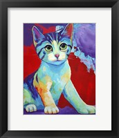 Framed Colorful Kitten Finningan