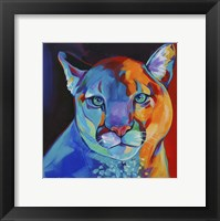 Framed Mountain Lion