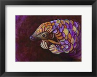 Framed Pangolin