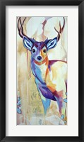 Framed White Tail Deer