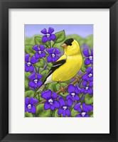 Framed State Birds And Flowers NJ