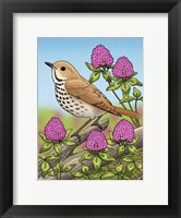 Framed State Birds And Flowers VT