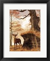 Framed Autumn Buck