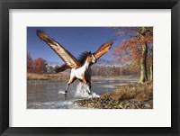 Framed Autumn Pegasus