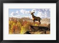 Framed Buck Over Autumn Valley