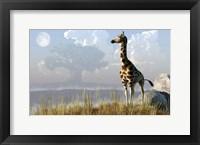Framed Giraffe And Giant Tree