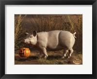 Framed Halloween Pig