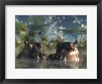 Framed Hippos Coming To Get You