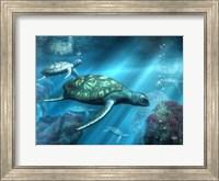 Framed Sea Turtles