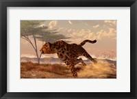 Framed Speeding Cheetah