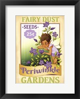 Framed Periwinkle Seeds