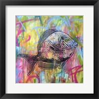Framed Fishy Spray