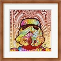Framed Stormtrooper