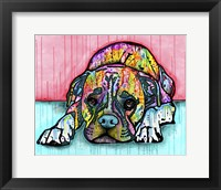 Framed Lying Boxer
